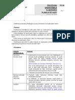 Proceduri privind Auditul Intern
