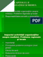 Cap2_organizatiile_mediul