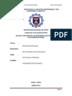 Fernandez Protocolo Probfibus
