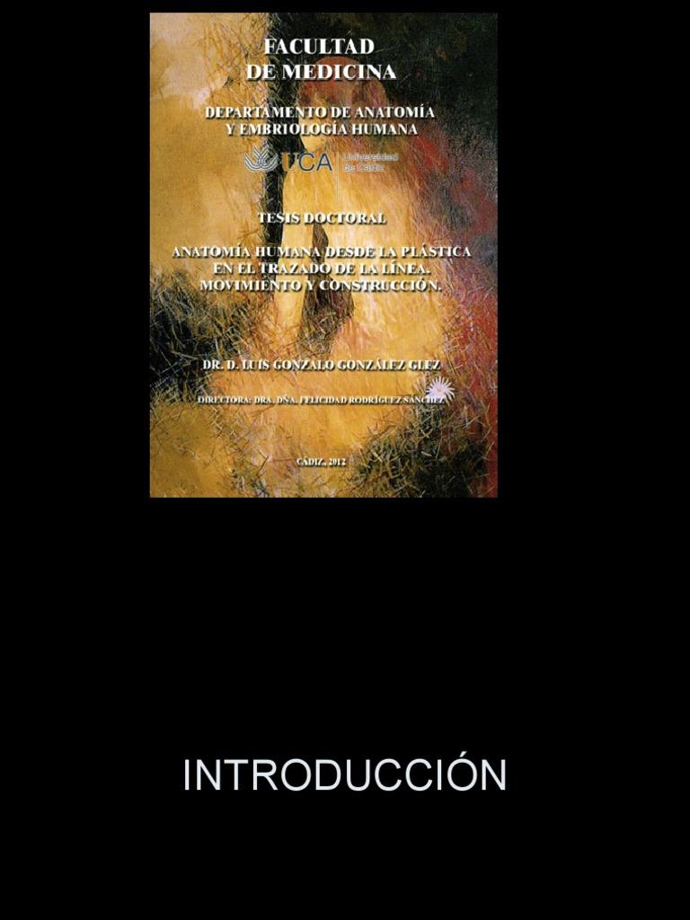 Dr Luís Gonzalo Gonzales Gles - Anatomia Humana Desde La Plástica en ...