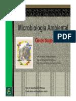Aula Ciclosbiogeoquimicos II