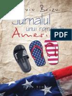 Jurnalul unui român în America - de Silviu Brizu (Fragmente)