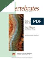 Invertebrates 2