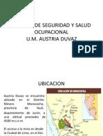 Getion de Seguridad de La Empresa Minera Austrai Duvas