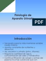 4._Aparato_Urinario