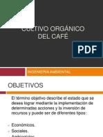 Cultivo Orgánico Del Café