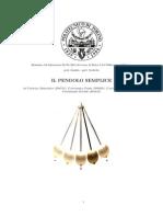 Relazione Pendolo Semplice Politecnico di Torino