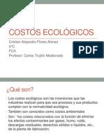 Costos Ecológicos Cristian Flores Alonso 4°C