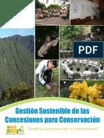 Gestion Concesiones Final-web2