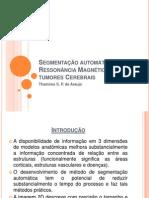Segmentação automática de MR de tumores Cerebrais