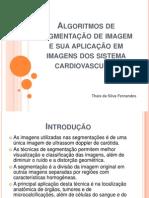Algoritmos de segmentação de imagem e sua aplicação em imagens do sistema cardiovascular