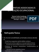 Nefropatias-costalonga Ocupacionais Nefropatias Ppt.
