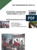 Consejo Veracruzano Del Chile Lona