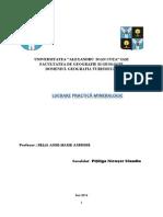 Pîțîliga Nicușor-Claudiu Lucrare Mineralogie