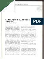 Patologias Del Cordon Umbilical