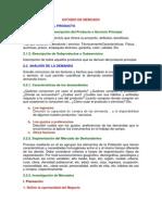 1.-Esquema Para Informe Estud.mercad - Copia