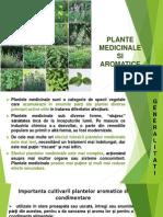 Prezentare_medicinale_aromtice