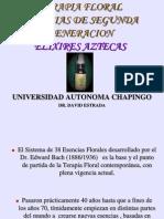 T.F. Elixires Aztecas