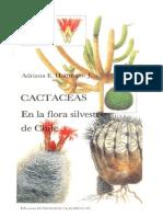 Cactaceas Flora Silvestre Chile