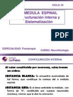 Neurofisiologia Clase 3.2