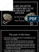 Men Are Smarter Than Women Because Their Brains