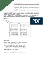 3-_Practica_de_Muestreo_-_2014.pdf