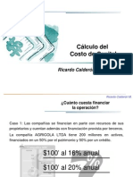 calculodecostodecapital-090706141820-phpapp02