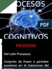 actividad8-131006083334-phpapp02