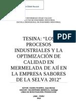 Tesina industrial.doc
