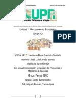 Ensayo Jose Luis Loredo Pymes 02