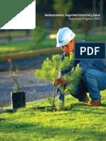 Medio Ambiente, Seg. Industrial y Salud