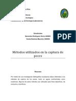 Metodos y tecnicas PECES.pdf