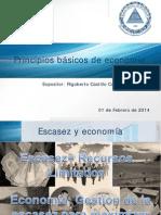 Castillo, Rigoberto feb.-2014 Principios de economia 1.pdf