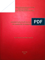 Organização Política Do Estado - Os Caminhos Da Democracia