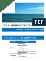 level i- enterprise it services marketing