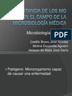 importancia_de_los_microorganismos_en_la_medicina