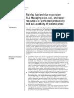 IRRI Rainfed Lowland Rice Ecosystem 1999
