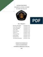 Laporan FDC Asia Selatan
