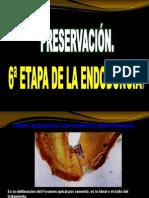 6TA ETAPA DE ENDODONCIA.ppt
