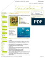 Filets de dinde marinés au citron et ses légumes croquants.pdf