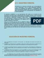 MUESTREO FORESTAL.pptx
