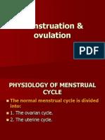 Menstruation & Ovulation