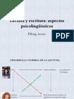 Lectura y Escritura Aspectos Psicolingsticos (2)
