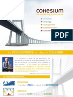 Presentation Groupe Cohesium 2009
