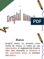 Slide Codul Muncii