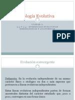 Clase 6- Unidad I - Evidencias Evolutivas Embiologicas y Anatomicas - 230511