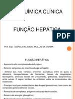 04 Hepatico