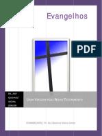 01 Uma Viagem Pelo Novo Testamento - Evangelhos