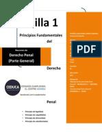 89569739 Resumen Derecho Penal Parte General