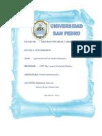 PRESENTACION DE ESTADOS DE RESULTADOS.docx